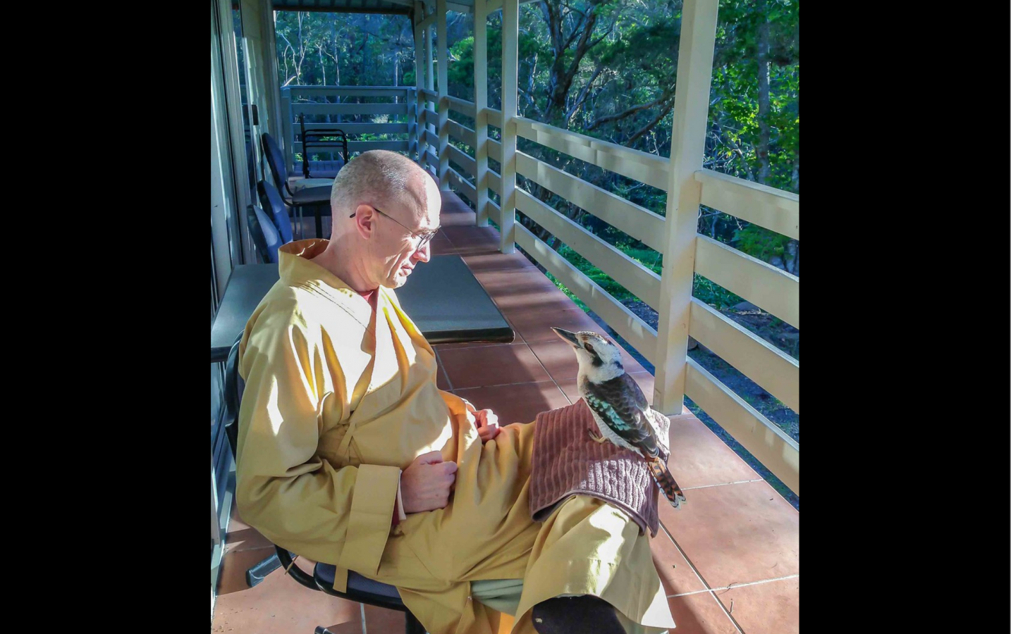 The second is wild bird, a kookaburra named Ollie, perching on the leg of a monk and appearing to be deep in conversation. --Rev. Heng Sure
